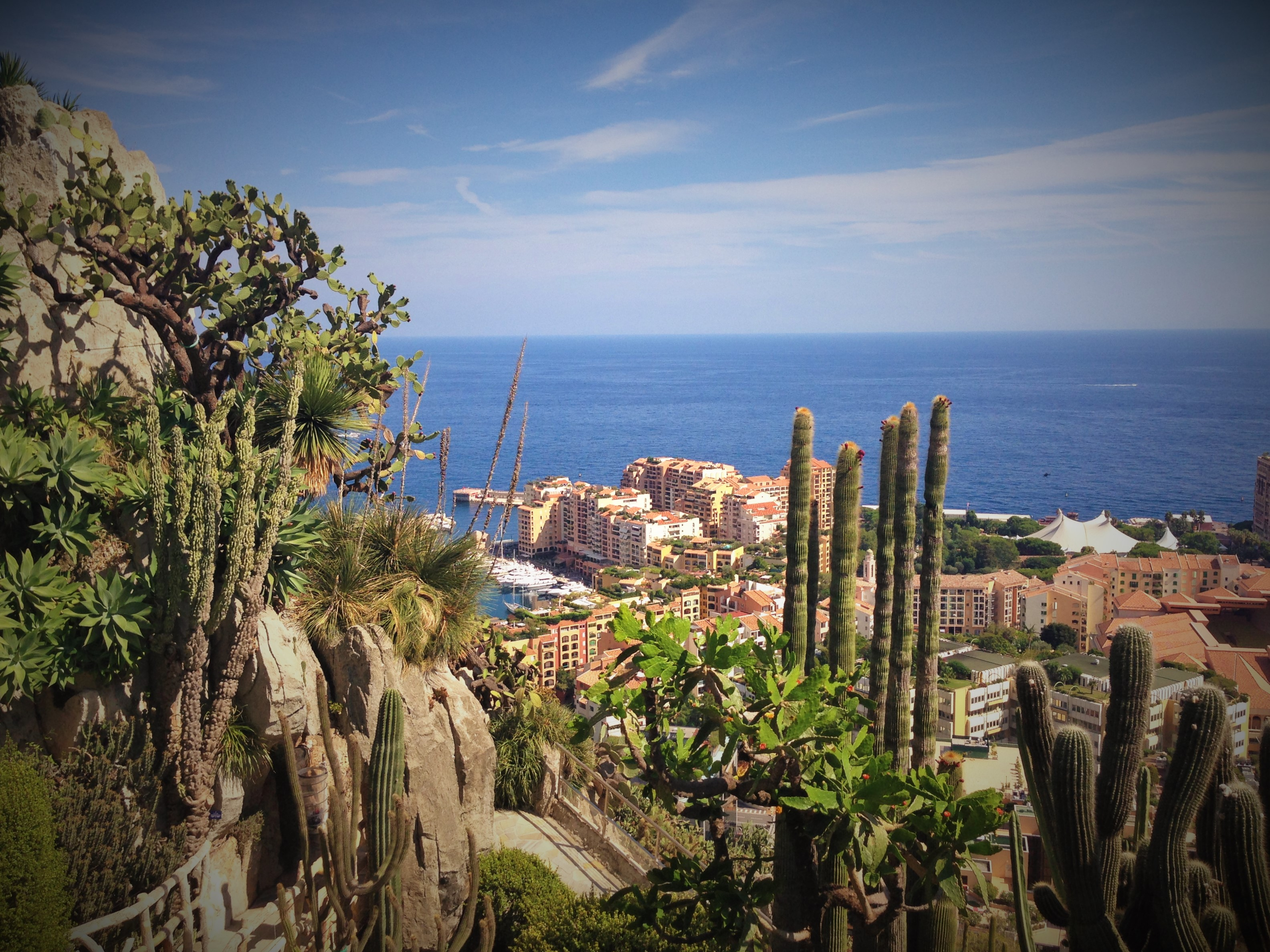 Living the highlife in monaco a family guide to for Jardin exotique monaco